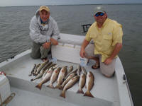 texas saltwater fish