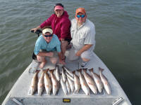 rockport redfish pic